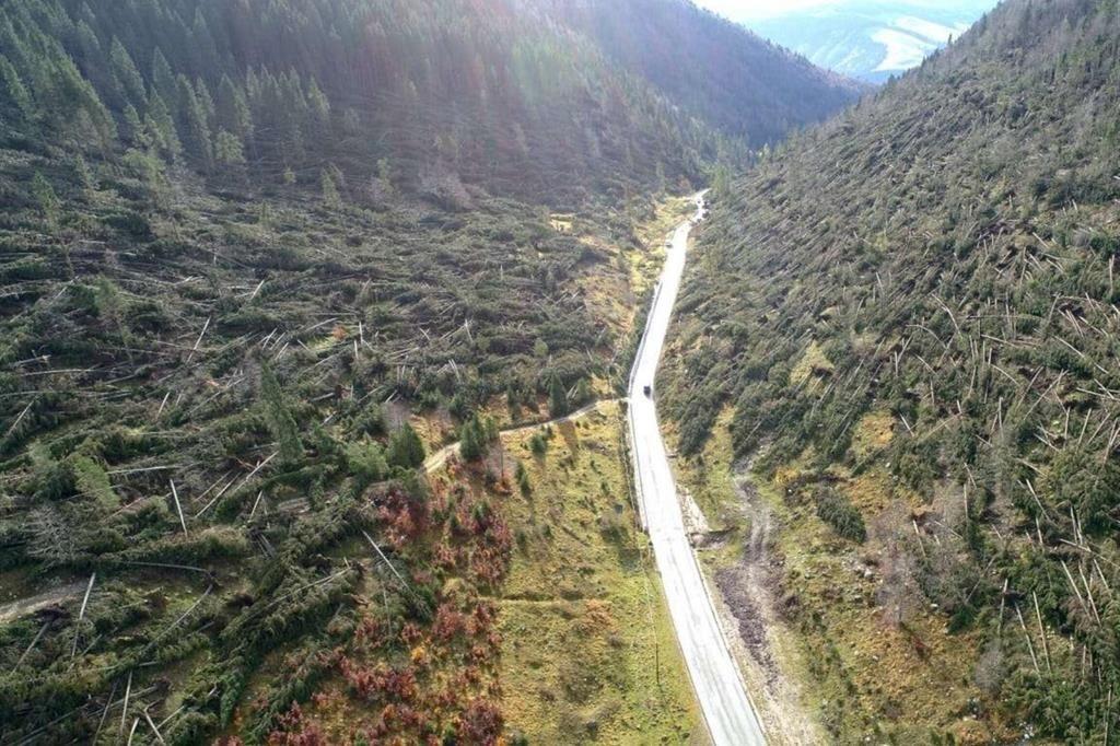 Foreste abbattute Asiago