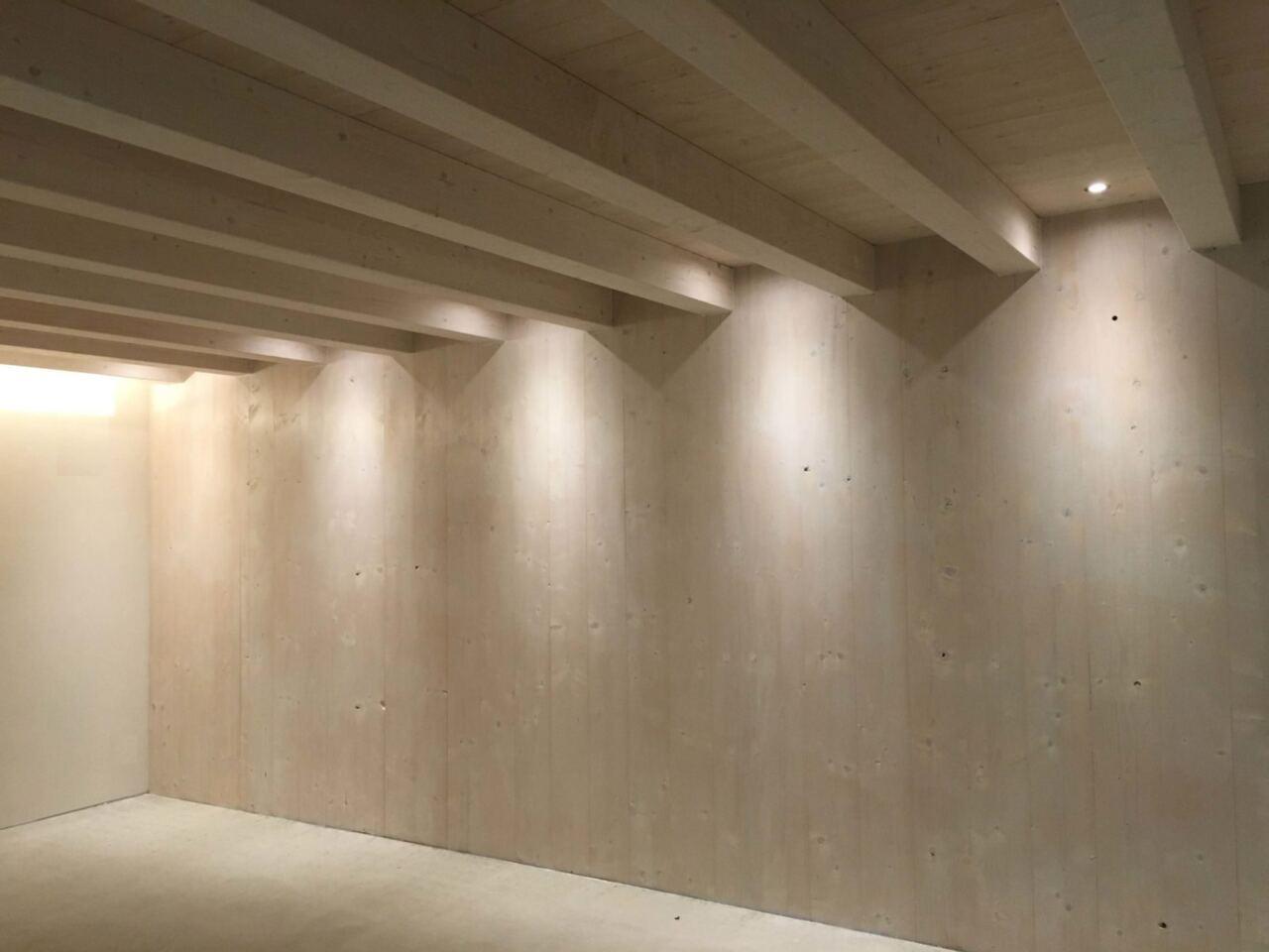Faretti E Spot Da Soffitto illuminazione nelle case in legno - ligno